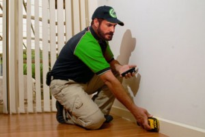 Dan Purkis pest inspection gold coast